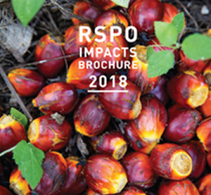 RSPO Impacts report